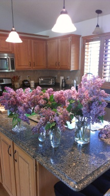 The results of one of my lilac-picking expeditions.